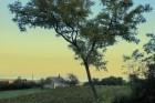 Tájkép Szentantalfa